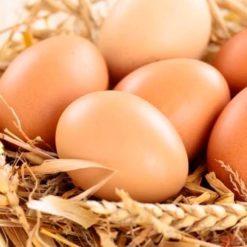 Фермерское яйцо