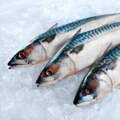 Рыба замороженная